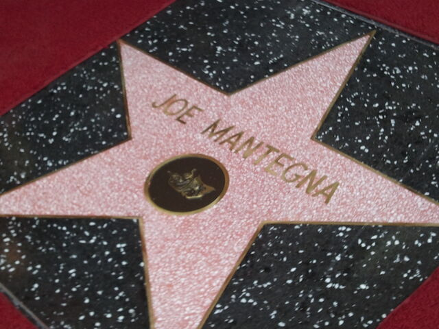 File:Joe Mantegna Star.jpg
