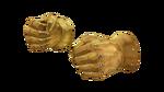 GoldFist RD2