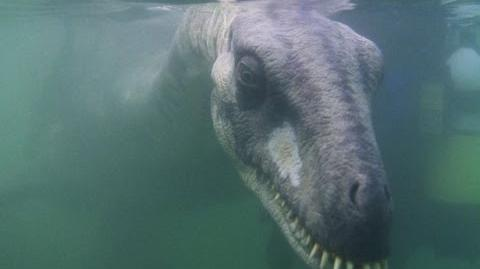 12 Cryptids That Might Actually Exist