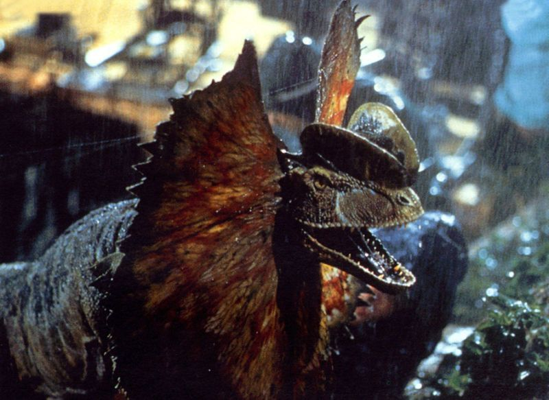 Dilophosaurus (Jurassic Park) | The Everything Wikia ...