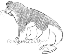 Walrus dog