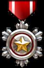 CSO Medal.png