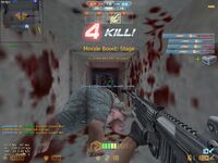 Cs assault 20121208 1422570