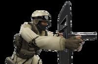P shield csx