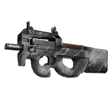 File:P90ashwood.png