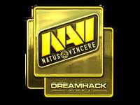 Csgo-dreamhack-2014-navi-gold