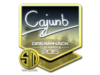 Csgo-cluj2015-sig cajunb foil large-10-23