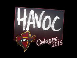 File:Csgo-col2015-sig havoc large.png