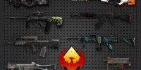 Operation Phoenix Weapon Case/Gallery