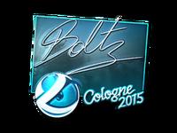 Csgo-col2015-sig boltz foil large
