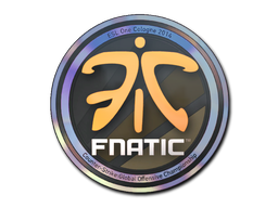 File:Sticker-cologne-2014-fnatic-holo-market.png