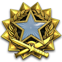 Service medal 2017 lvl1 large