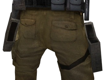 File:P elite dholster empty back css.png