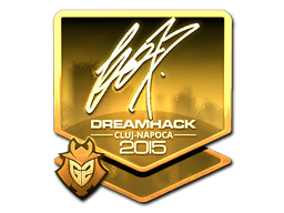 File:Csgo-cluj2015-sig fox gold large.png