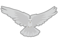 Csgo-Flair dove