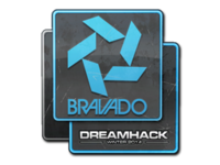 Csgo-dreamhack2014-bravadogaming large