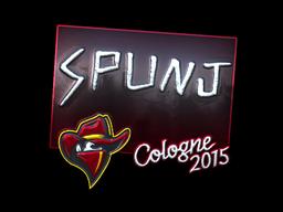 File:Csgo-col2015-sig spunj foil large.png
