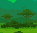 Jungle (Biome)