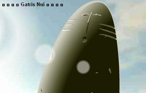 Gatris Nui.spirit