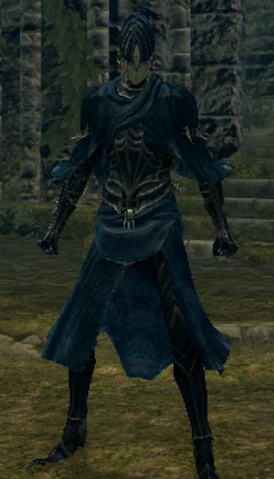 File:Lord's blade set male.png