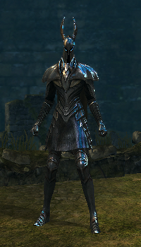 Silver knight set female