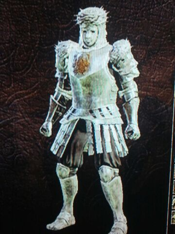 File:Looking glass knight armor.jpg