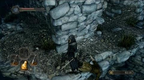 Dark Souls 2 English Network Test Ver