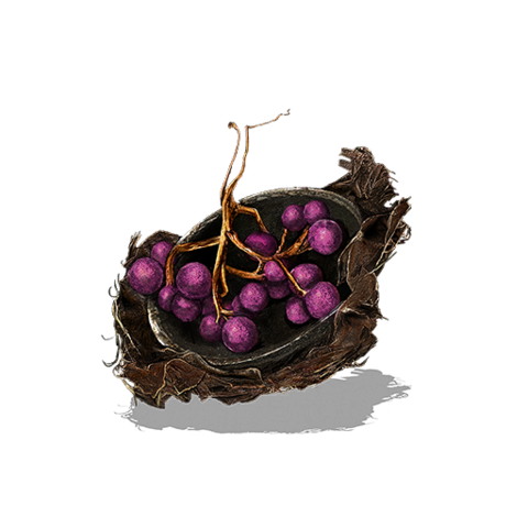 File:Mossfruit.png