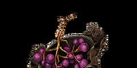 Mossfruit