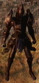 File:Alonne Captain Set.png
