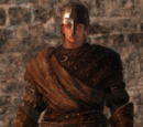Hard Leather Set (Dark Souls II)
