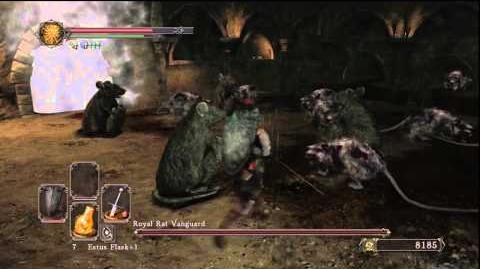 Dark Souls II How To Beat Royal Rat Vanguard