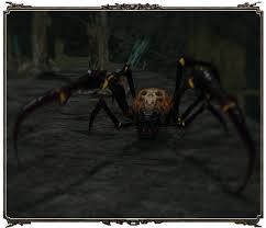 File:Parasite spider.jpg