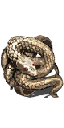 File:Covetous Gold Serpent Ring.png