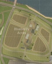Blueberry Acres.JPG