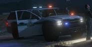 Park Ranger SUV V