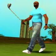 Golfschläger, Leaf Links Golfclub, VCS.JPG