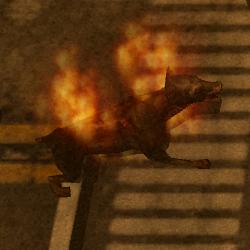 Burning Flesh Hound