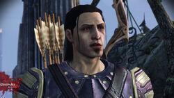 Nathaniel-Howe-dragon-age-origins-15768385-786-442