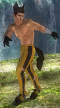 DOA5LR Designer Award 2015 Costume Jann Lee