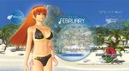 DOAP Calendar Feb