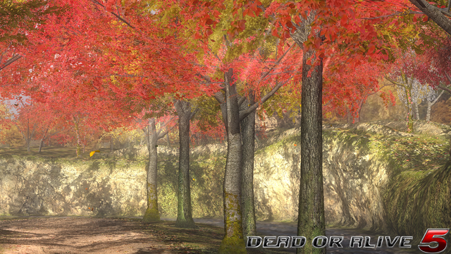 File:DOA5LR - Forest1- screen by AdamCray and AgnessAngel.png