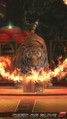 DOA5LR - The Tiger Show1 - screen by AdamCray and AgnessAngel