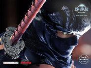 DOAO Ryu Wallpaper 2