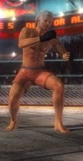 DOA5 Brad Fighter Screen