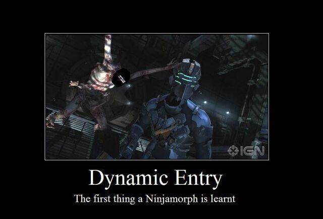 File:Dynamic Entry.jpg