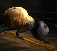 Crawler.jpg