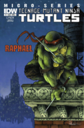 Teenage Mutant Ninja Turtles - Raphael as he appears on the front art cover of the IDW Comics
