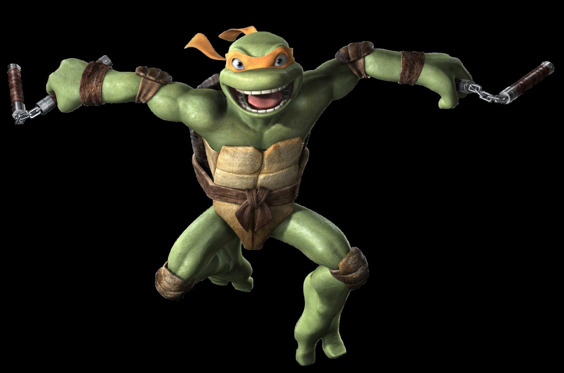 michelangelo ninja turtle pictures image information michelangelo