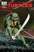 Teenage Mutant Ninja Turtles - Leonardo as he appears on the front art cover of the IDW Comics
